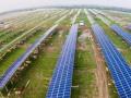 宁波:光伏农业不仅减排还促进农民增收