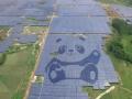 全球第二个熊猫光伏电站落地广西贵港