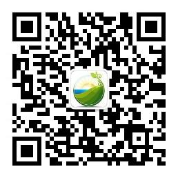 PVIC 2017光伏创新大会将于11月8日-9日在上海举办