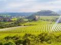 欧盟要求免除最高太阳能进口关税遭美国拒绝