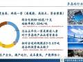 【回顾展望会】(八)2019-2020年中国多晶硅产业现状及趋势分析