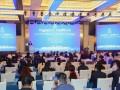 新华丝路:以碳中和为目标,中国太阳能产业将迎来更快发展